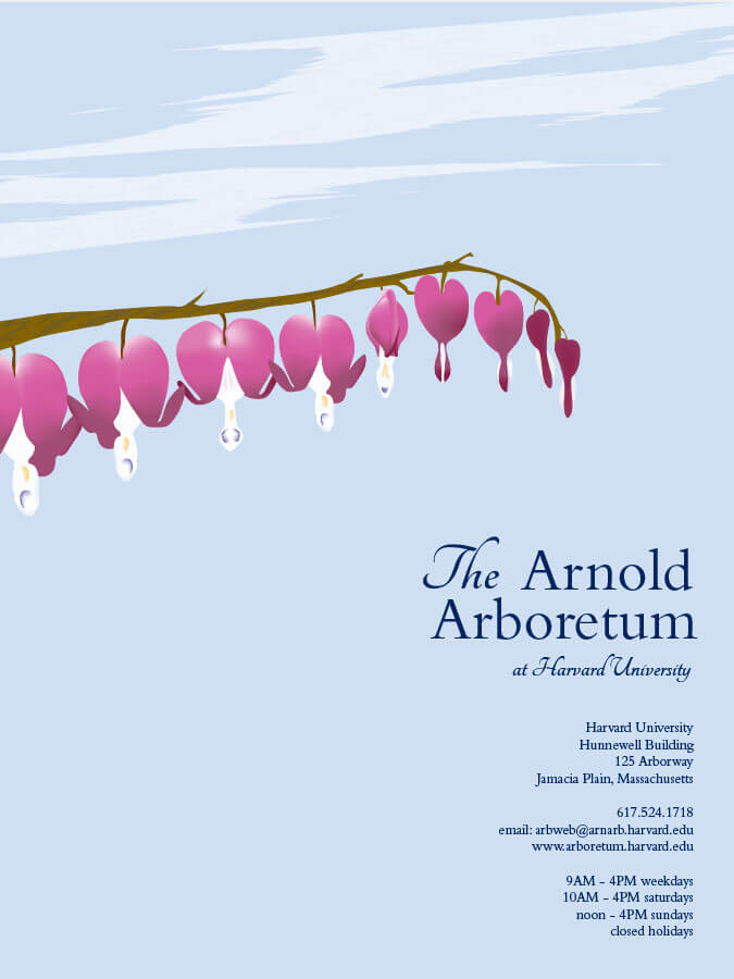 promotional poster concept for the Arnold Arboretum